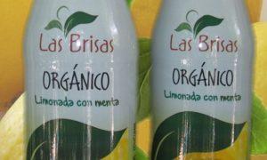 limonada-con-menta-organico-las-brisas