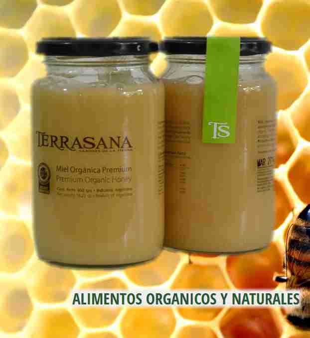 miel-organica-cremosa-terrasana
