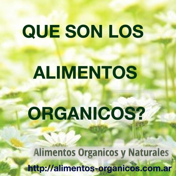 Alimentos org nicos alimentos organicos y naturales - Que alimentos son antioxidantes naturales ...