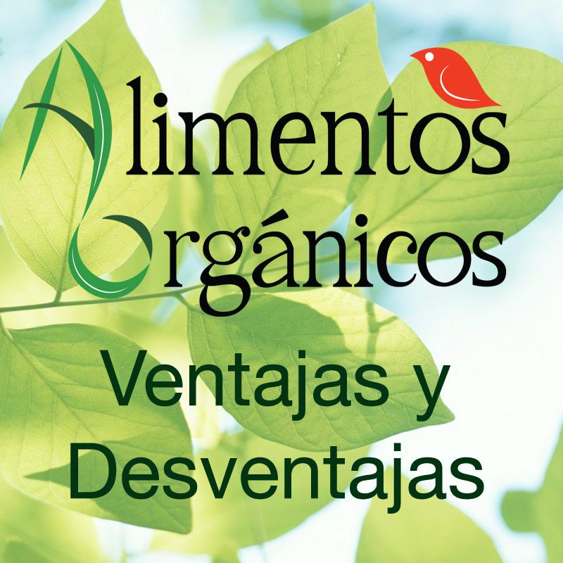 Alimentos Orgánicos Ventajas y Desventajas - Alimentos Organicos y ...