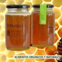 miel-organica-liquida-terrasan