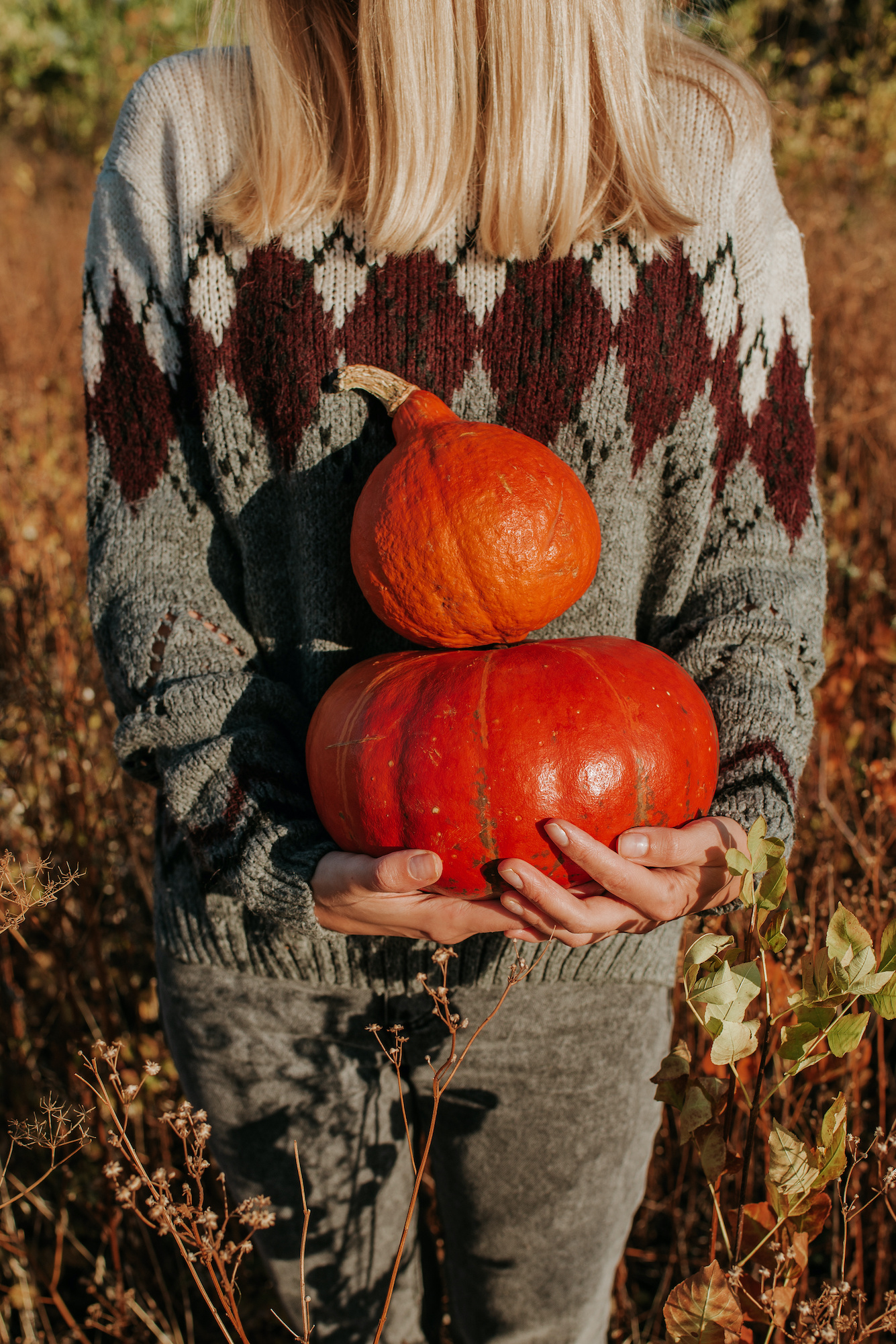 Happy blond hair women holding in hand pumpkin. Young beautiful girl in harvest. Season organic food. Autumn season. Fall color, orange and yellow. Pumpkin day and Halloween. Female in outdoor nature