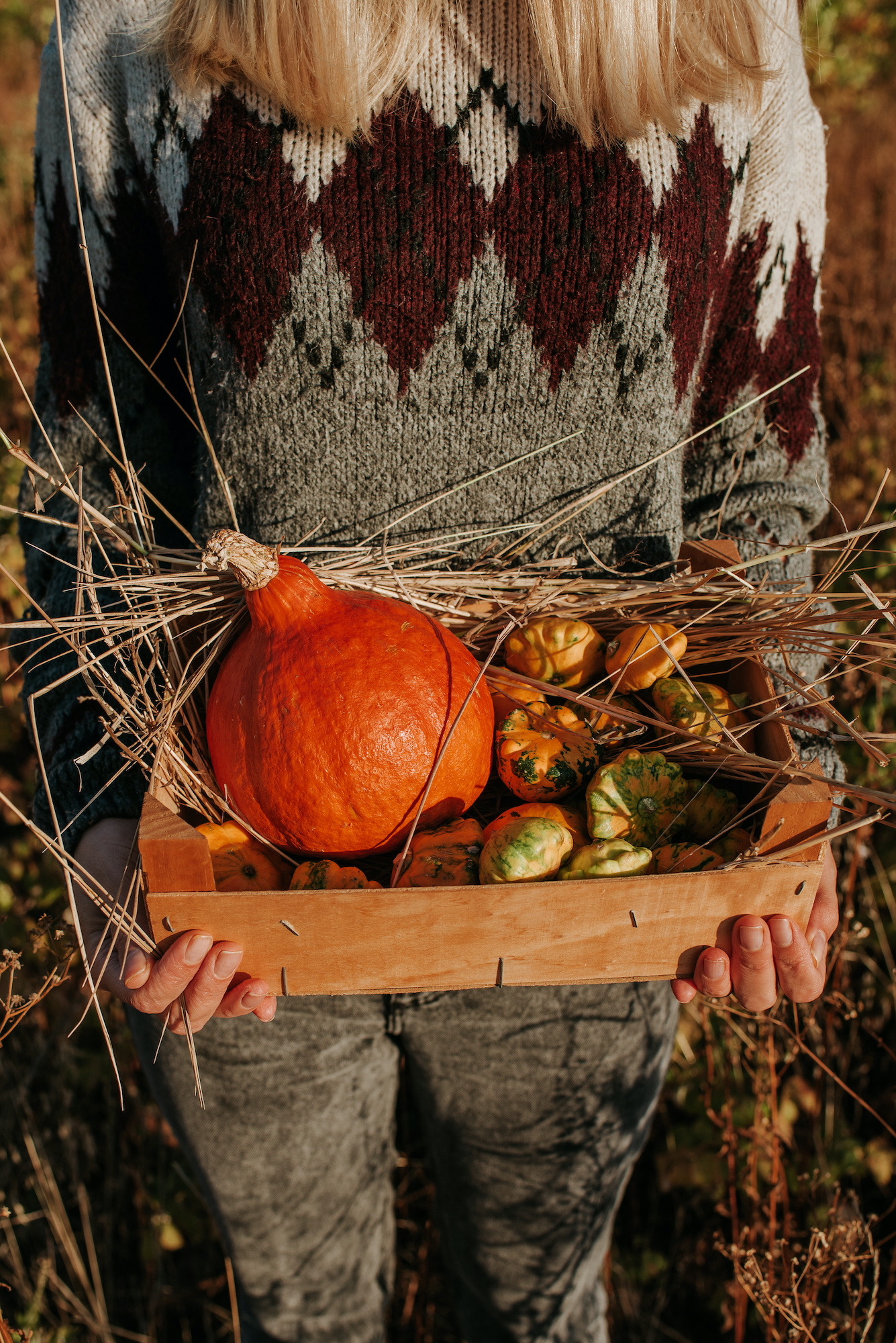 Woman holding wooden box with pumpkin and squash. Blond hair girl harvesting in outdoor nature. Organic food. Autumn season. Fall color, orange and yellow. Pumpkin day, Thanksgiving and Halloween